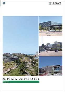 University Prospectus