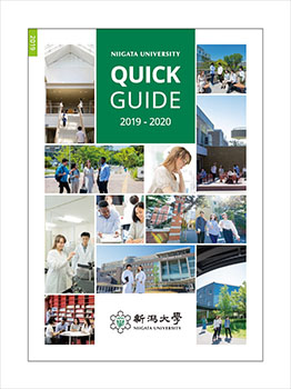 Quick Guide 2019 English