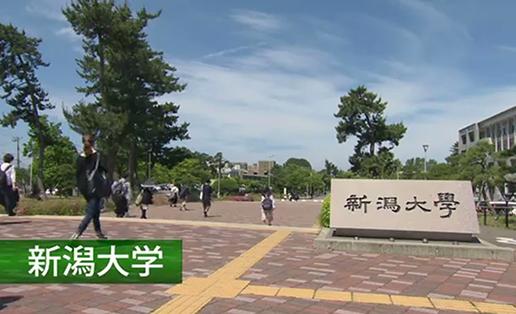 新潟の大学・短大そこが知りたい2017 (新潟大学)