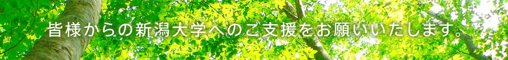 皆様からの新潟大学へのご支援をお願いいたします。