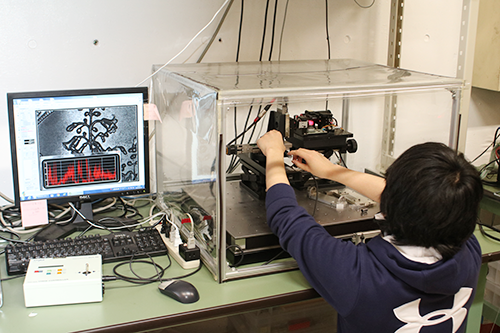 広視野レーザ顕微鏡のプロトタイプを操作する学生。今後、企業への導入と技術応用が期待される