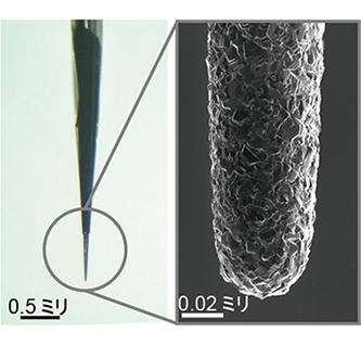 針状ダイヤモンド電極センサー