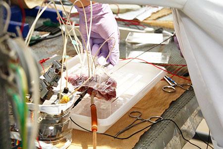 研究室の実験風景