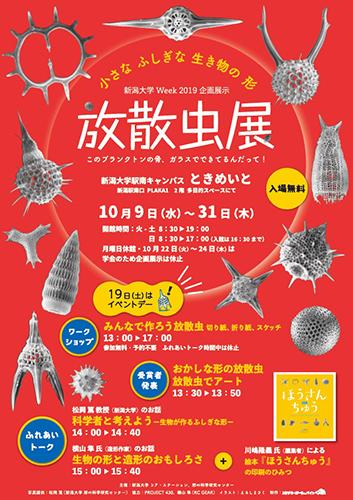 【新大WeeK】企画展示「放散虫展」チラシ